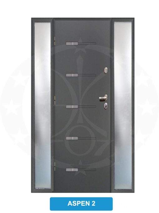 Двері вхідні металеві GERDA TT PLUS Z DOSWIETLAMI Aspen 2